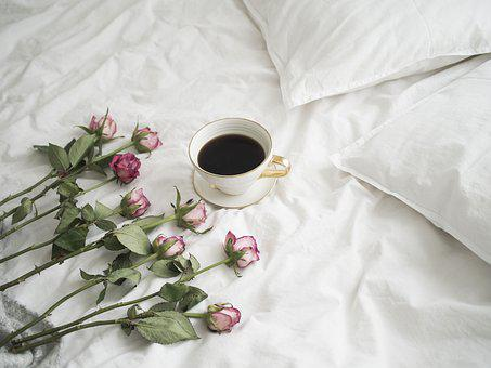 Roses, Coffee, Petal Of A Rose, Romantic, Nature