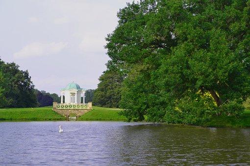 Swan, Karlsaue, Kassel, Pond, Hesse, Gorgeous
