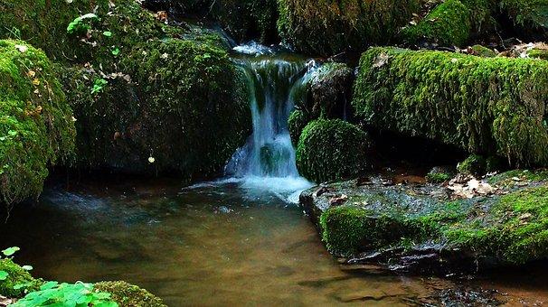 Creek, Small Waterfall, Small Stream