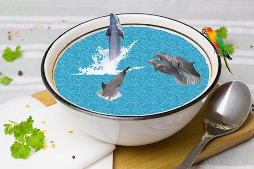 Fantasy, Dolphins, Tureen, Photo Montage, Dolphin, Swim