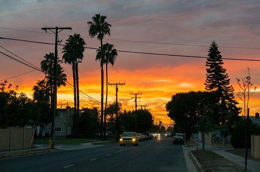 Sunset, Street, Los Angeles, California, Cali, Palms