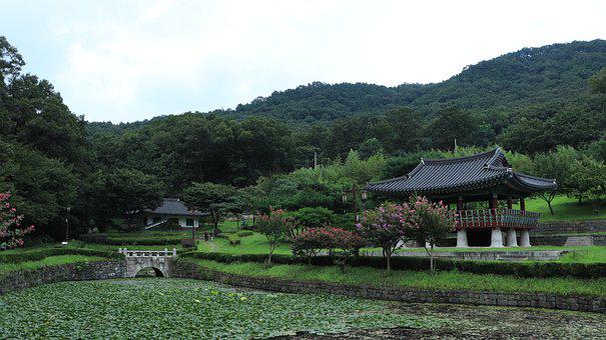 Pond, Water, Tree, Trees, Mountain, Sky, White, Blue