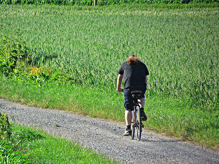 Bike, Male, Field, Horse, Sport, Means Of Communication