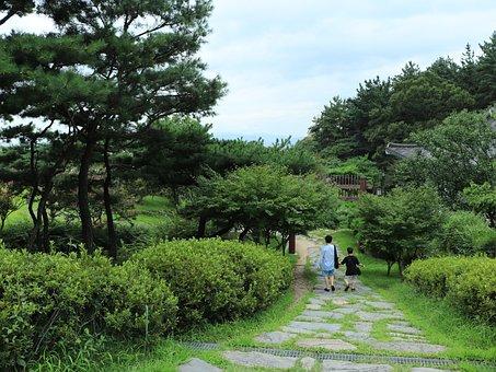 Tree, Trees, Grass, Park, Nature, Natural, Lawn, Season