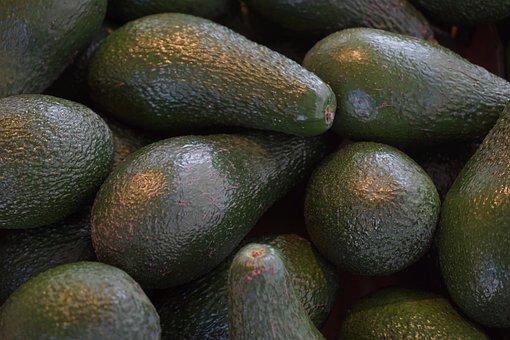Avocados, Avocado Fruit, Fruits, Food, Green