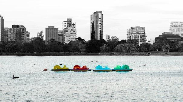 Paddle Boats, Lake, Paddle Boat, Paddle, Boat, City