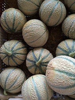 Cantaloupe, Melons, Fruit, Nature, Orange, Melon, Juicy