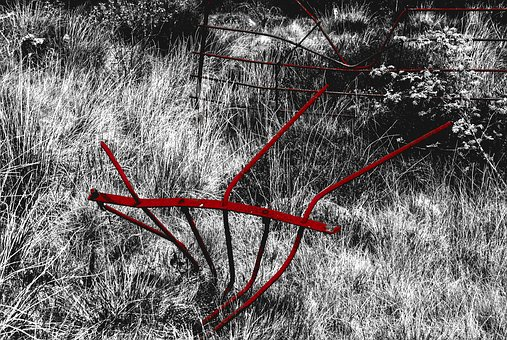 Fence, Red, Grass, Metal, Black And White, Countryside