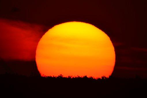 Sunset, Summer, Sun, Nature, Evening, Soltse, Sky
