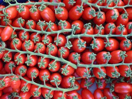 Red, Tomatoes, On The Vine, Vegetables, Vegetarsisch