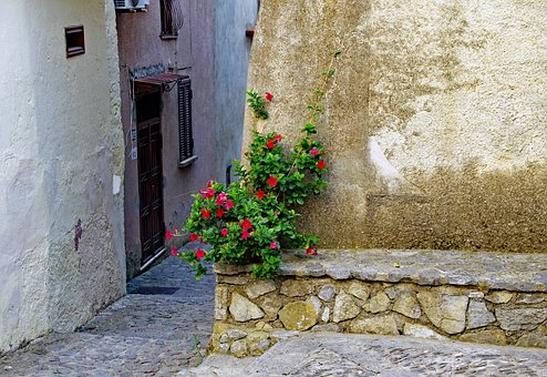Alley, Glimpse, Scalea, Old Town, Hibiscus