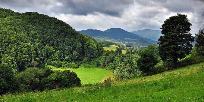 Landscape, Field, Meadow, Clouds, View, Forest
