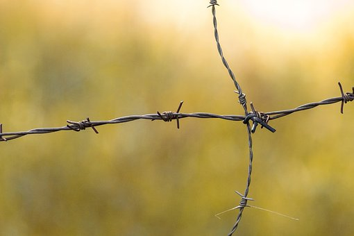 Barbed Wire, Demarcation, Background, Thorn, Fence