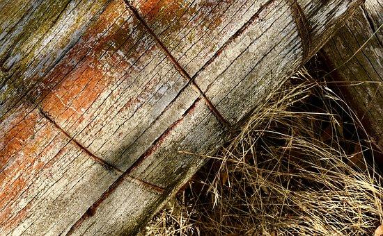 Log, Wood, Timber, Nature, Tree, Brown, Natural, Trunk