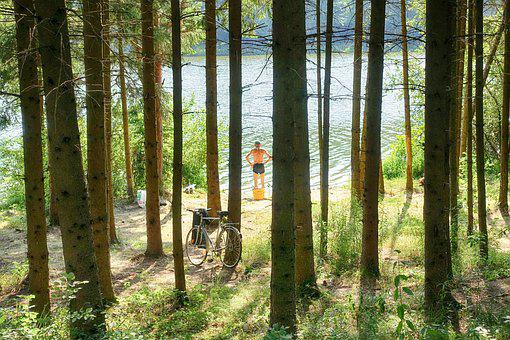 Angler, Fishing, Nature, Lake, Summer, Hungary, Tourism