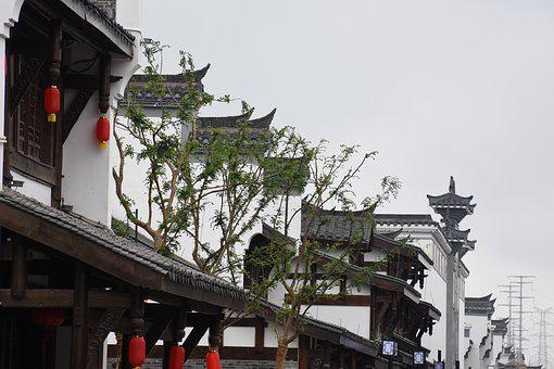 Tree, Eaves, Ancient Architecture