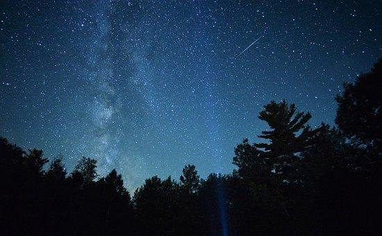Milky, Way, Treetops