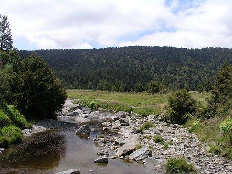 New Zealand, New, Zealand, River At Lake Matheson