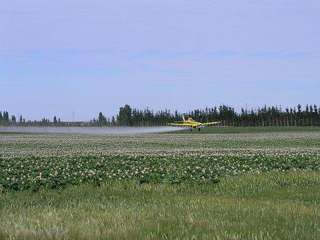 Agriculture, Spray, Plane, Farm, Insecticide, Equipment