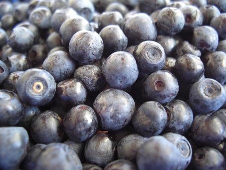 Blueberries, Fruits, Eat, Fruit, Close