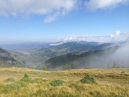 The Fog, Morning Mist, Morning, Dawn, Landscape, Haze