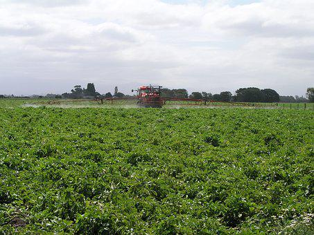Agriculture, Spray, Ground, Rig, Farm, Insecticide