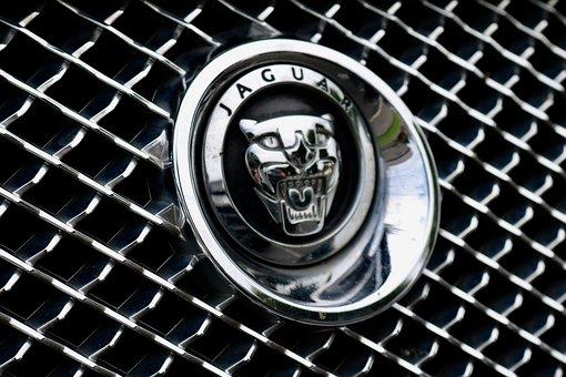 Jaguar, Auto, Vehicle, Style, Transport, Classic