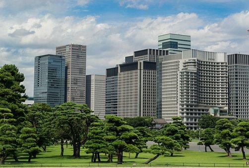 Tokyo, Kokyo Gaien, Skyline, Black Pine, Japan, City