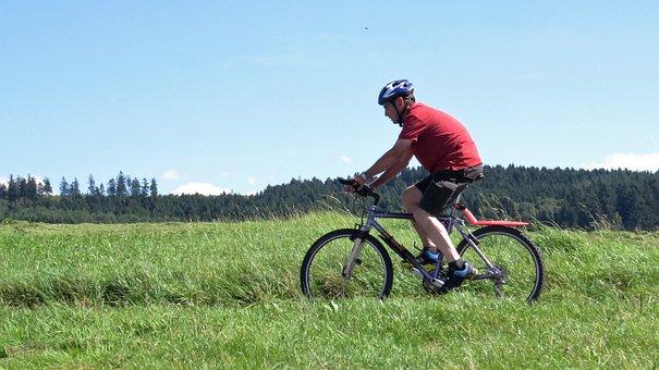 Wheel, Bike, Cycling, Cycle, Mountain Bike