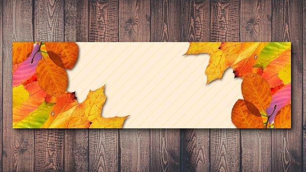 Autumn, Wood, Fund, Fall Foliage, Autumn Mood, Leaf