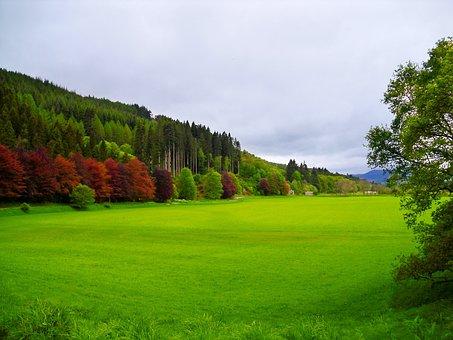 Farm Field Dunkeld Scotland, Countryside, Lush