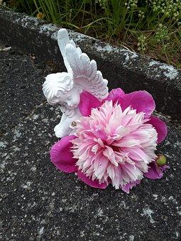 Angel, Purple, Flower, Wing, Gorgeous