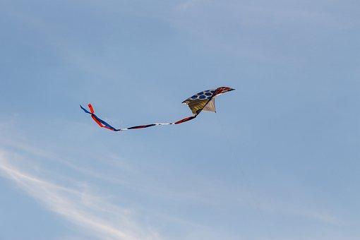 Dragons, Autumn, Kite Flying, Sky, Dragon Rising, Wind