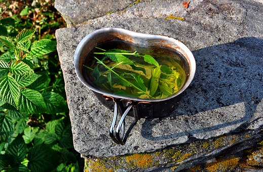 Mint, Tea, Dish, The Drink, Drinking, Mountains, Nature