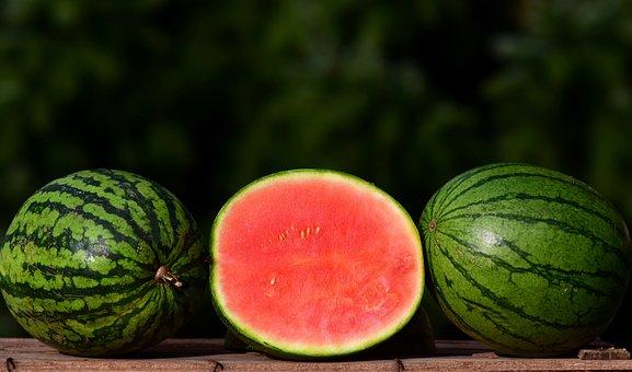 Melon, Ziermelone, Watermelon, Small, Small Melon