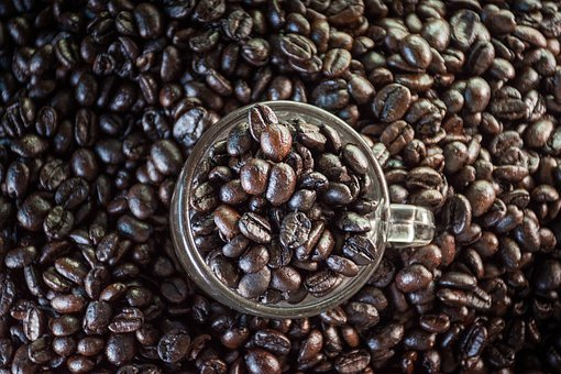 Coffee, Coffee Bean, The Process, Beverage, Delicious