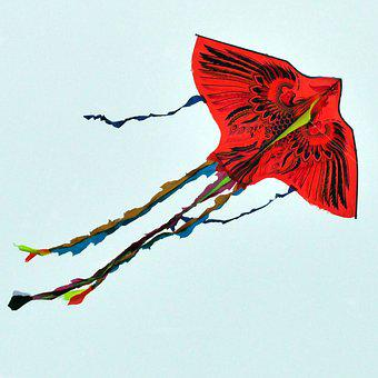 Paper Dragon, Fly Of, Kite Flying
