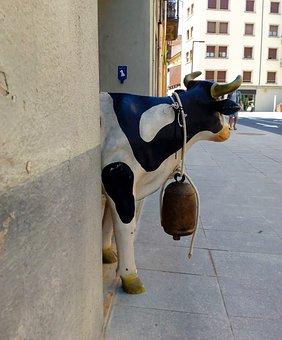 Cow, Animal, Mammal, Street, Entry, Farm, Head, Black