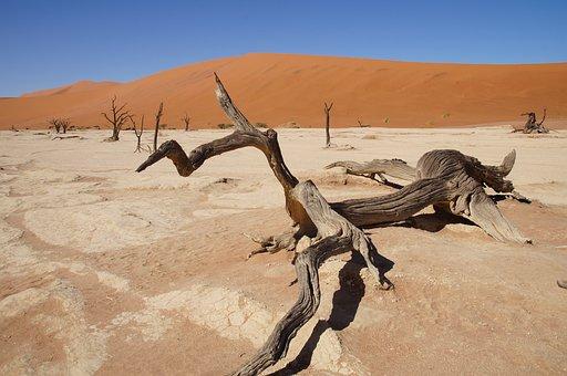 Namibia, Africa, Namib Desert, Dead Vlei, Desert
