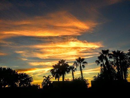 Arizona, Desert, Sunset, Landscape, Cactus, Sky, Nature