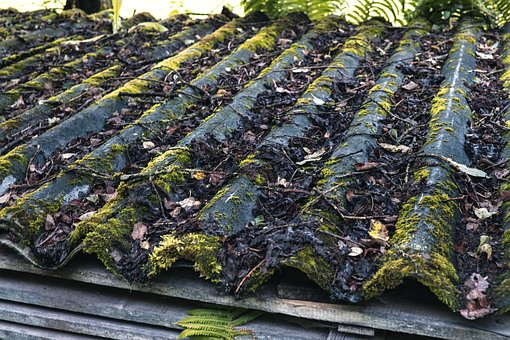 Corrugated Sheet, Moss, Roof, Old, Aesthetic, Silent