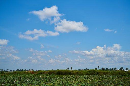 Landscape, Rural, Village, Sunny, Nature, Background