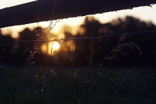 Sunset, Evening, Dusk, Silhouette, Landscape, Afterglow