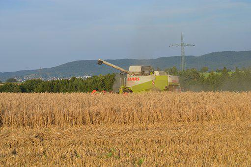 Harvest, Tractor, Agriculture, Field, Straw, Autumn