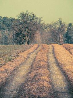 Steigerwald, Lane, Away, Path, Leisure, Nature, Hiking