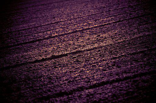 Field, Acreage, Abstract, Digital Art, Texture
