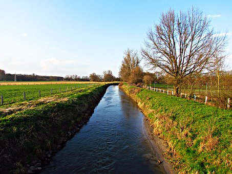 Brook, The Brook, Field, Water, Nature, Landscape
