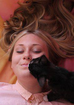 Kitten, Furry, Cute, Pet, Cat, Fur, Animals, Darling