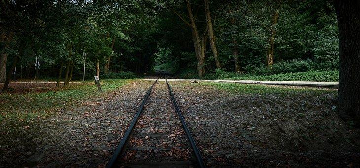 Szilvasvarad, Railway, Forest, Park, Train, Rail