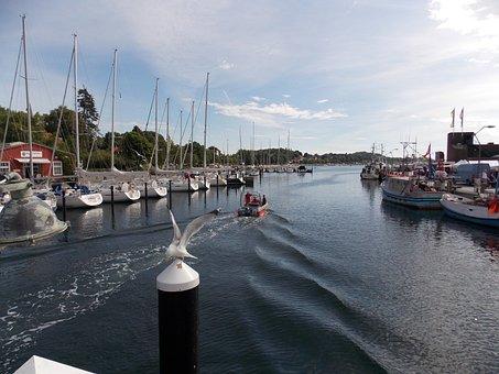 Water, Sea, Port, Eckernförde, Lake, Baltic Sea, Gulls